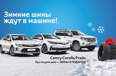 Зимние шины ждут в машине!